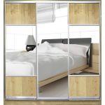 Шкафы-купе с фасадами из ЗЕРКАЛ и КОМБИНИРОВАННЫМИ фасадами (ДСП+зеркало+матовое зеркало) на 2 двери